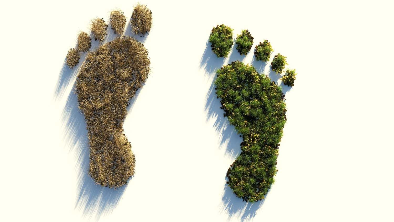 Cál é a túa pegada ecolóxica?