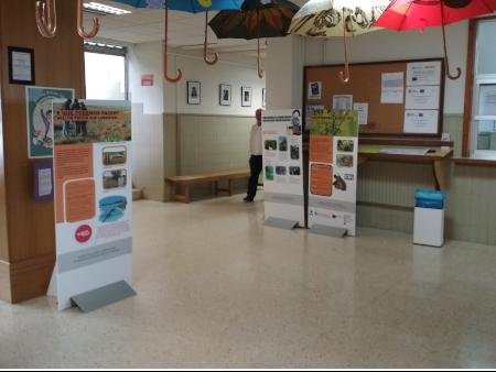 Exposición Unha Invasión Silenciosa. A Biodiversidade Baixo Ameaza