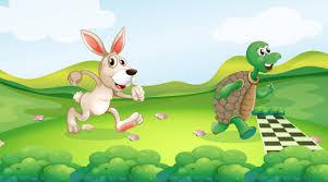 Carreira de tartarugas