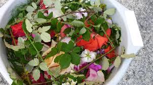 As Herbas de San Xoan